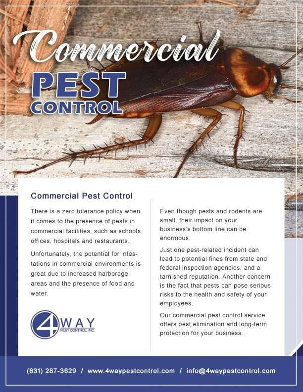 Commercial-Flyer-Front